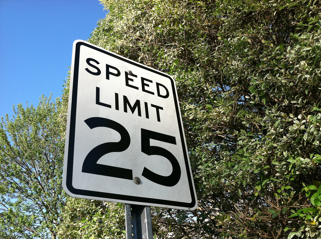 Speed Limits, Speed Bumps, and Road Signs